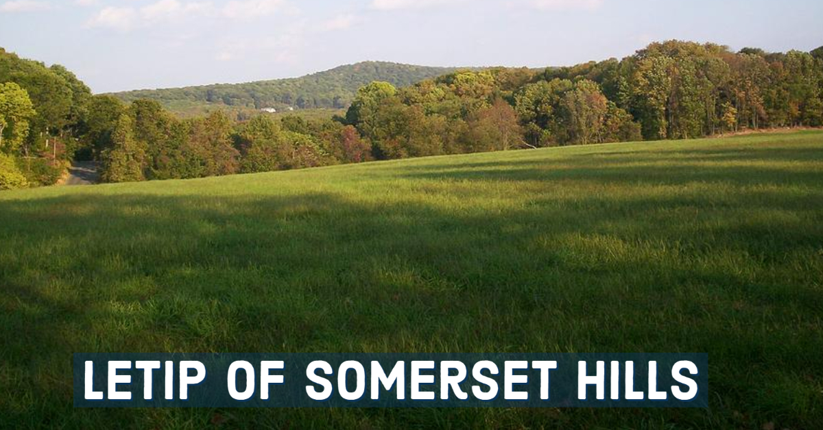 LeTip of Somerset Hills, NJ
